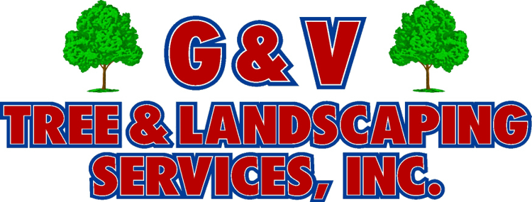 Virginia SEO and Web Design Client - G&V Tree Service Logo