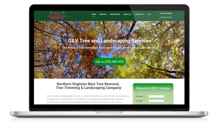 Northern Virginia Web Design Scott Mckellam Agency